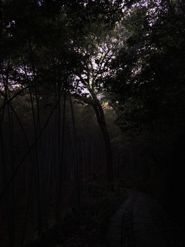 Accidentally took a hike over Qixia Mountain (栖霞岭) near sunset to get to West Lake, instead of just going around it.